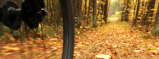 Take A Hike On Your Bike: Enjoy the Fall Foliage Cycling the Rail-Trails