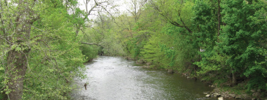 The Bushkill Stream Conservancy: Partnering for Conservation Success