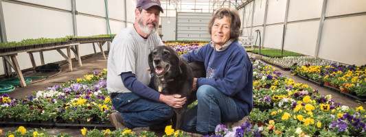 Buzas' Greenhouse and Farm