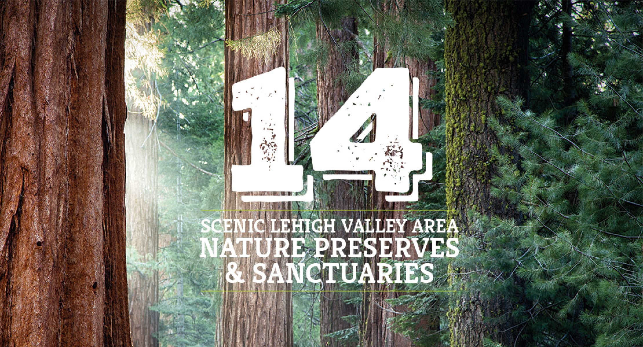 14 Scenic Lehigh Valley Area Nature Preserves Sanctuarieslehigh