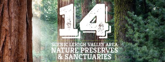 14 Scenic Lehigh Valley Area Nature Preserves & Sanctuaries
