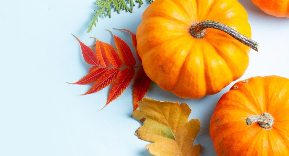river ramble pumpkins feature image