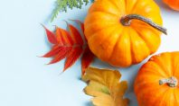 river ramble pumpkins feature image