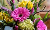 Ross Plants & Flowers